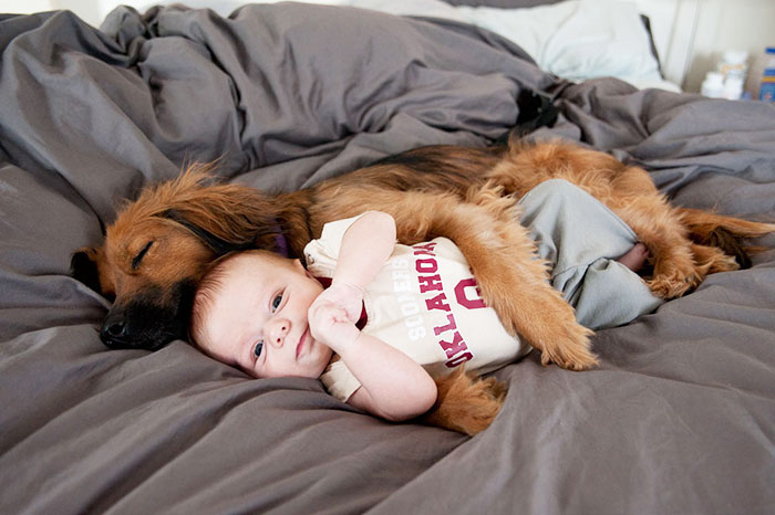 cute-adorable-photos-kids-animals-pets (11)