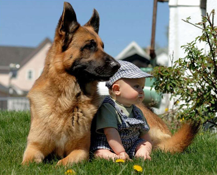 cute-adorable-photos-kids-animals-pets (13)