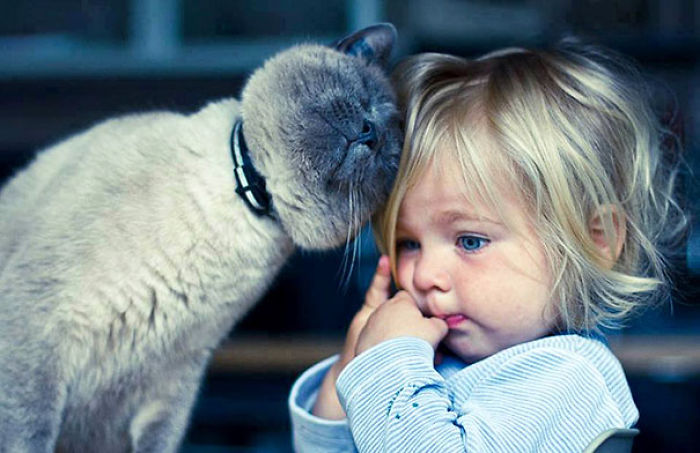 cute-adorable-photos-kids-animals-pets (3)