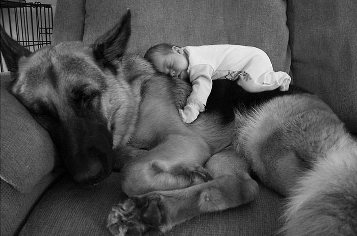 cute-adorable-photos-kids-animals-pets (6)