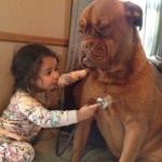 Heartwarming photos of children and animals