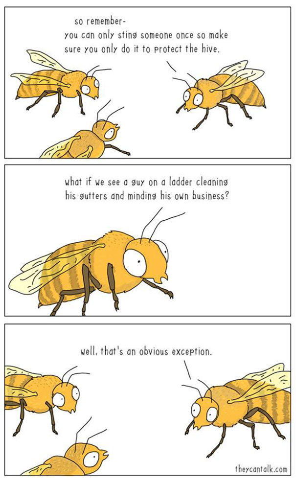 intersting-illustrations-funny-animal-comics (10)