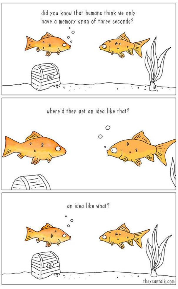 intersting-illustrations-funny-animal-comics (8)