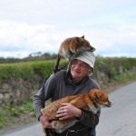 Heartwarming pictures of an old man and two foxes