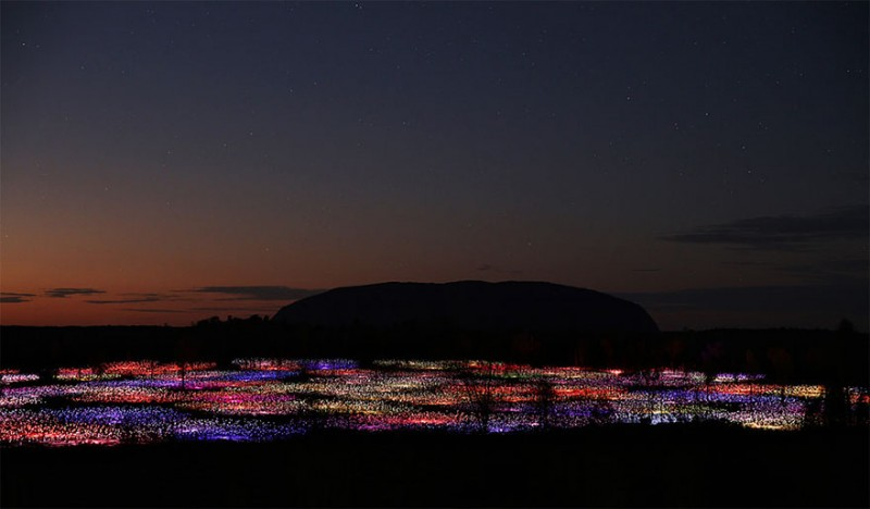 surreal-art-installation-light-field-australia-desert (1)