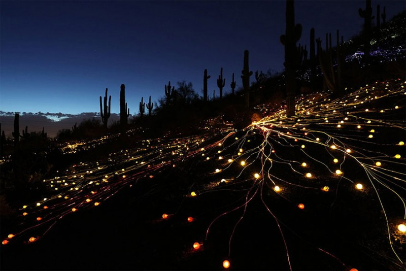 surreal-art-installation-light-field-australia-desert (9)