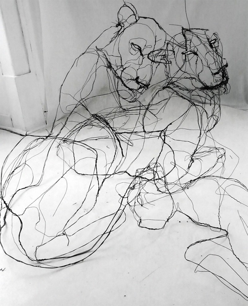 amazing-delicate-3d-objects-wire-animal-sculptures (3)