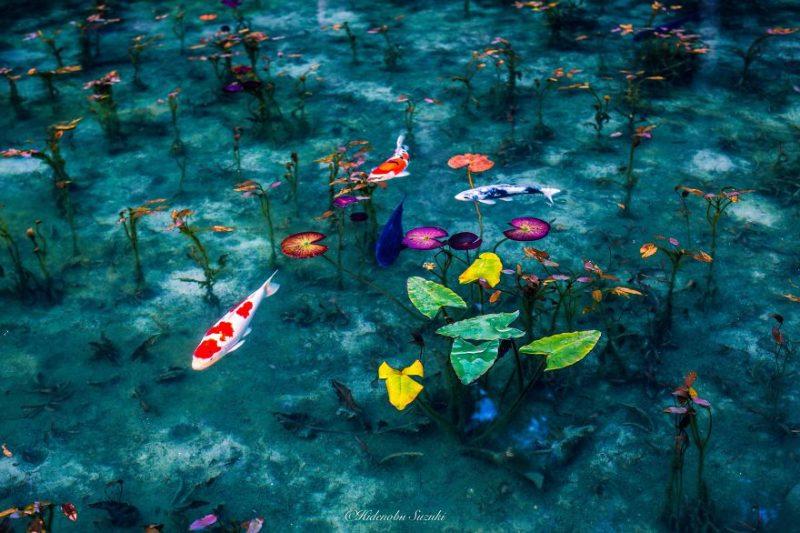 beautiful-photographs-Japans-rainy-season-like-paitnings (6)