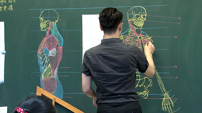 chinese-teacher-amazing-anatomical-chalkboard-drawings-blackboard (2)