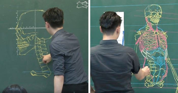 chinese-teacher-amazing-anatomical-chalkboard-drawings-blackboard (4)