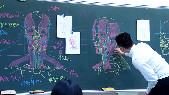 chinese-teacher-amazing-anatomical-chalkboard-drawings-blackboard (6)