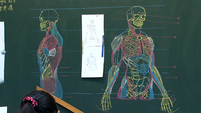 chinese-teacher-amazing-anatomical-chalkboard-drawings-blackboard (7)