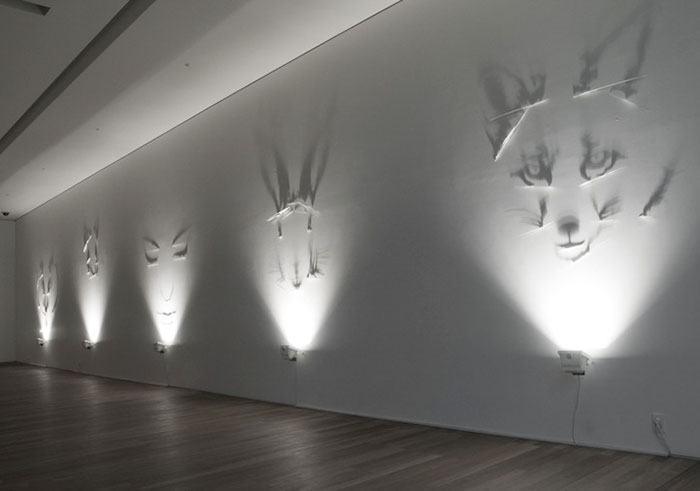 amazing-shadow-art-light-silhouettes-beautiful-optic-artistry (11)