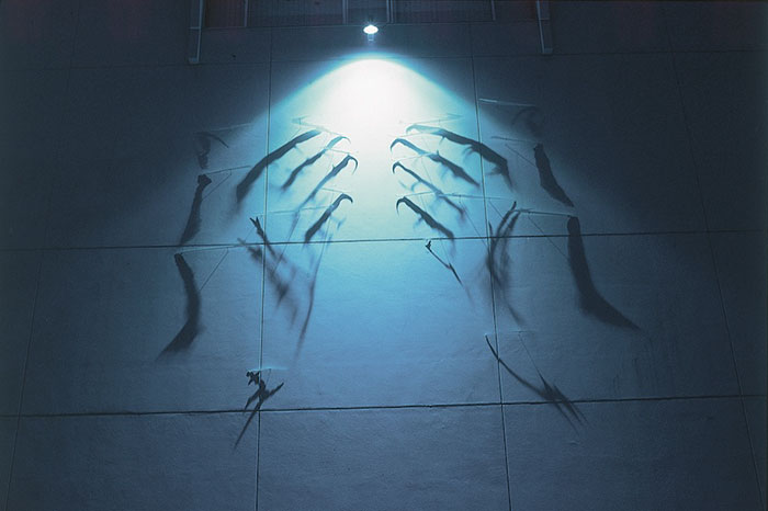 amazing-shadow-art-light-silhouettes-beautiful-optic-artistry (4)