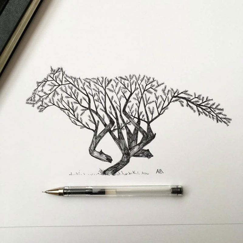 Pen ink animal illustrations by italian artist alfred - Dessin de nature ...