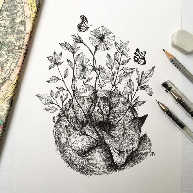 beautiful-pen-ink-animal-trees-illustrations-nature-drawings (11)