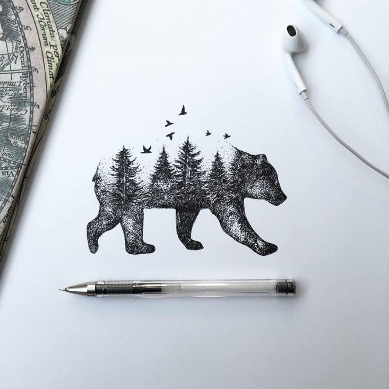 Beautiful Nature Pencil Drawings: Pen & Ink Animal Illustrations By Italian Artist Alfred
