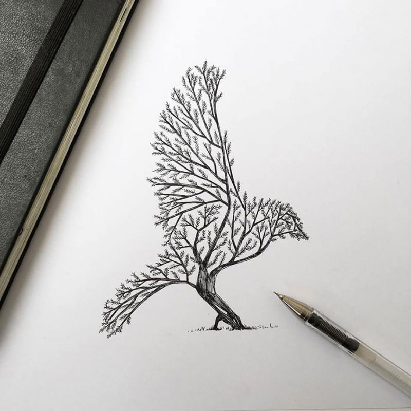 Pen Ink Animal Illustrations By Italian Artist Alfred Basha Vuing Com