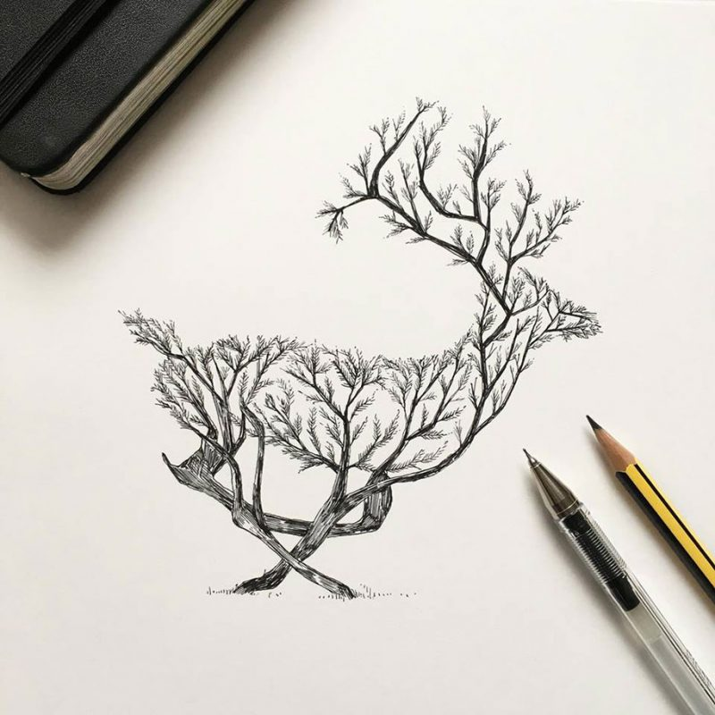 beautiful-pen-ink-animal-trees-illustrations-nature-drawings (6)