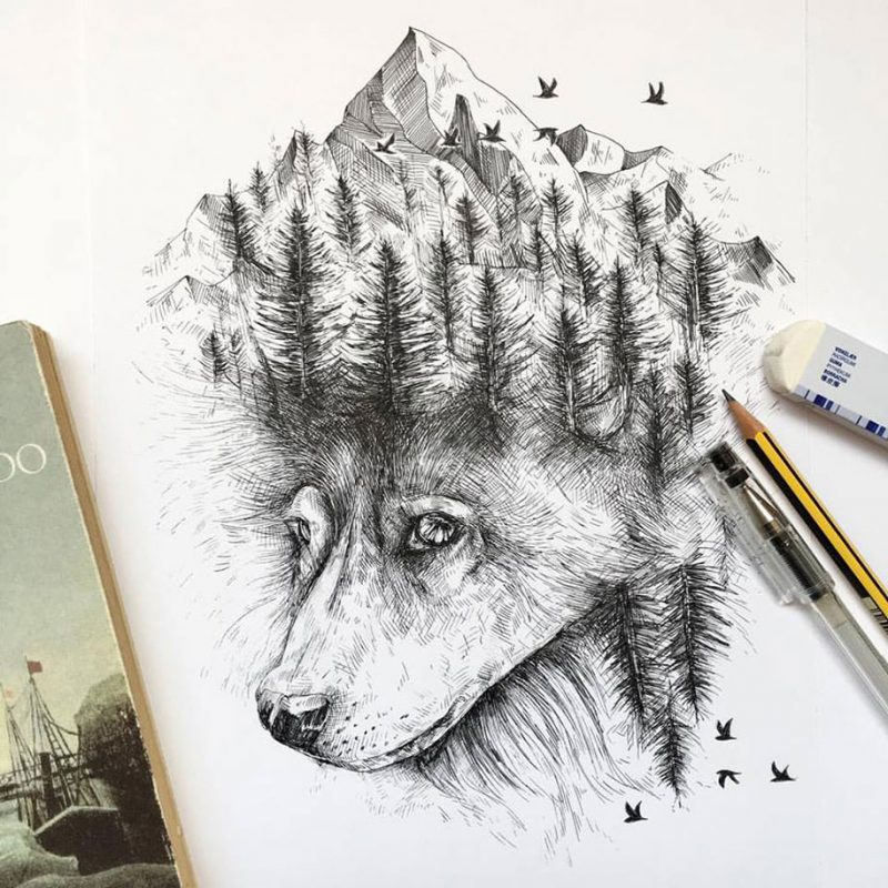 Pen And Ink Illustrations : Pen ink animal illustrations by italian artist alfred