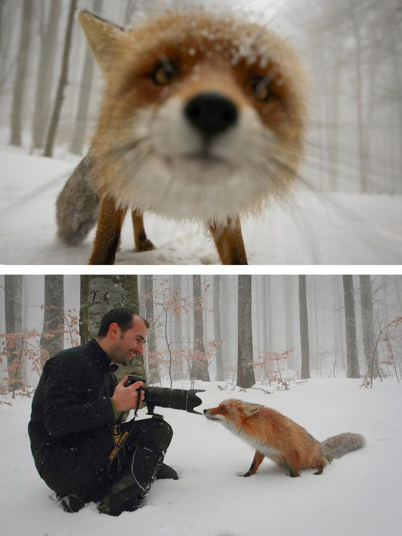 behind-the-scenes-photography-creative-photos (8)
