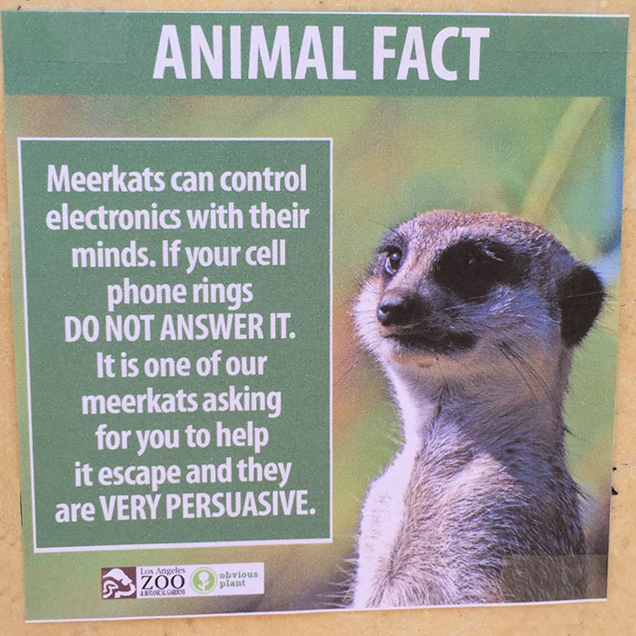 funny-animal-facts-fake-signs-los-angeles-zoo-obvious-plant-jokes (2)