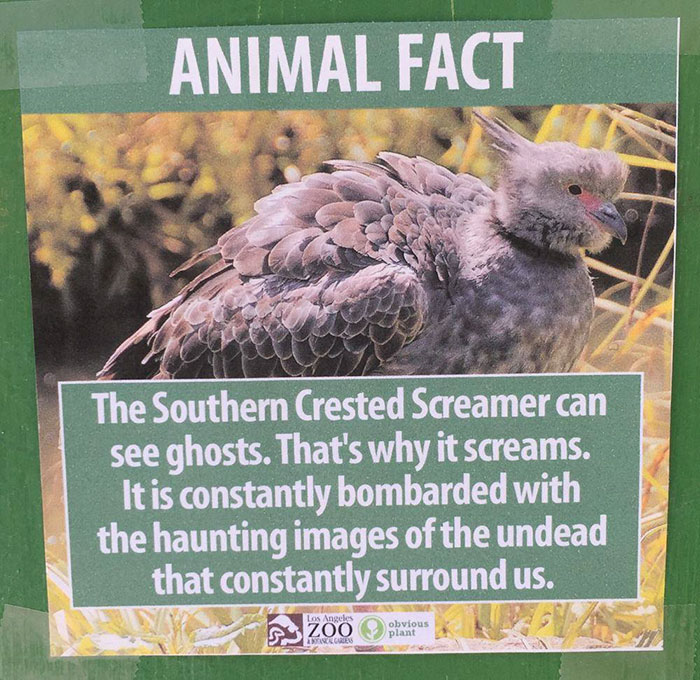 funny-animal-facts-fake-signs-los-angeles-zoo-obvious-plant-jokes (3)