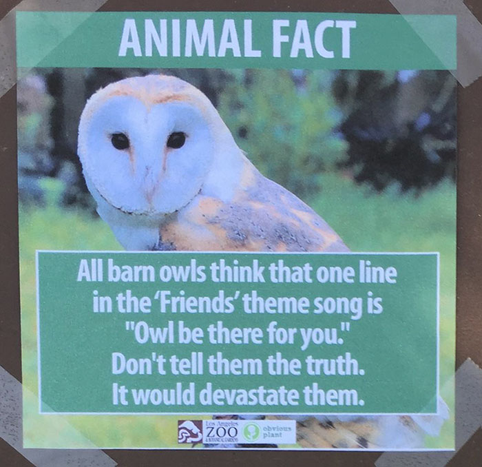 funny-animal-facts-fake-signs-los-angeles-zoo-obvious-plant-jokes (6)