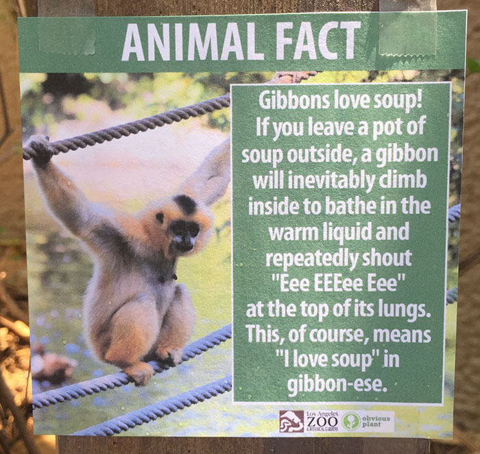 funny-animal-facts-fake-signs-los-angeles-zoo-obvious-plant-jokes (9)