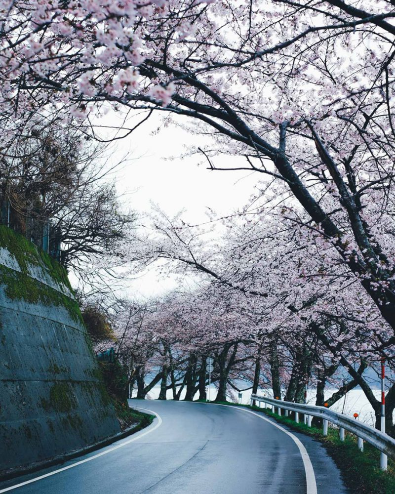 japanese-photographer-street-photographpy-kyoto-japan (10)