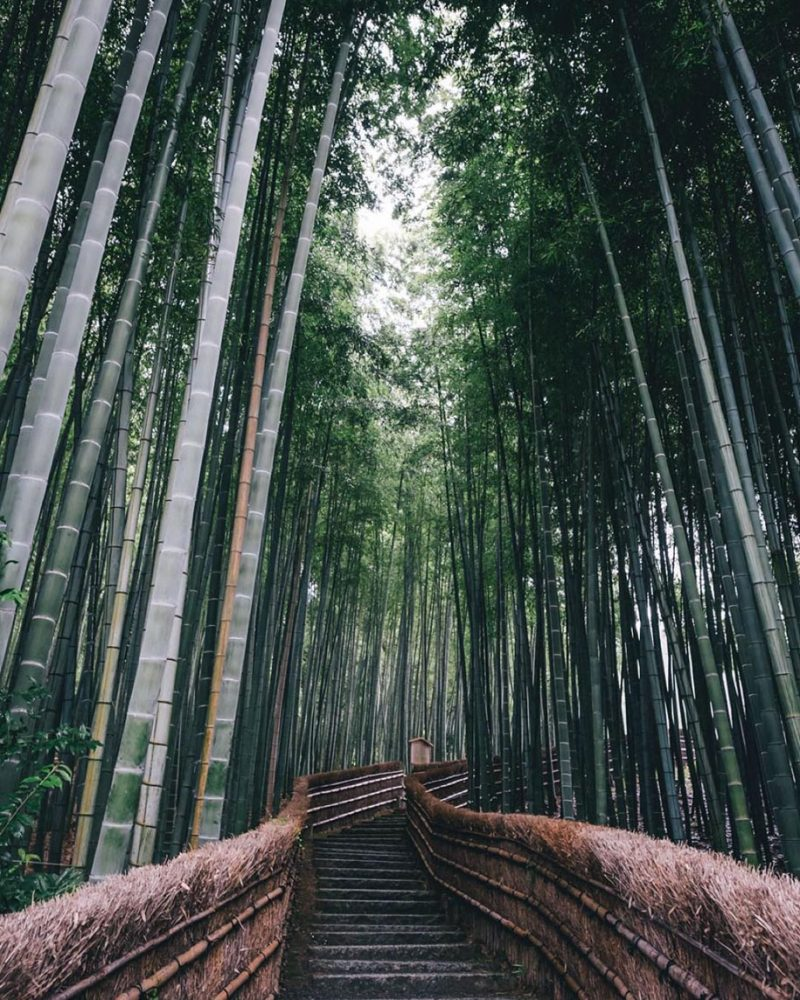 japanese-photographer-street-photographpy-kyoto-japan (14)