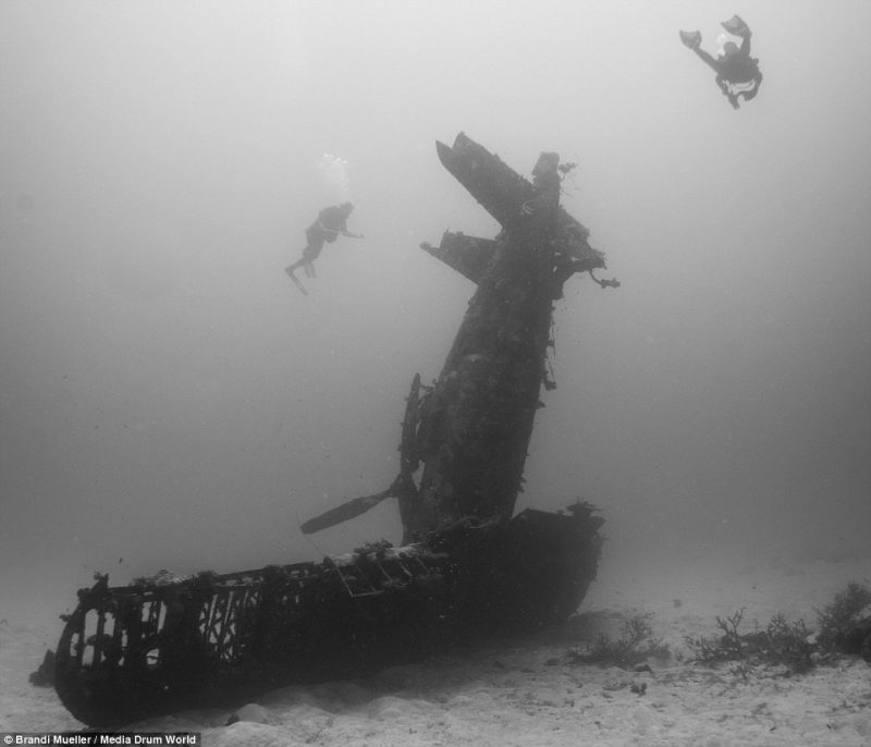 underwater-plane-graveyard-World-War-Two-fighters-photography (16)