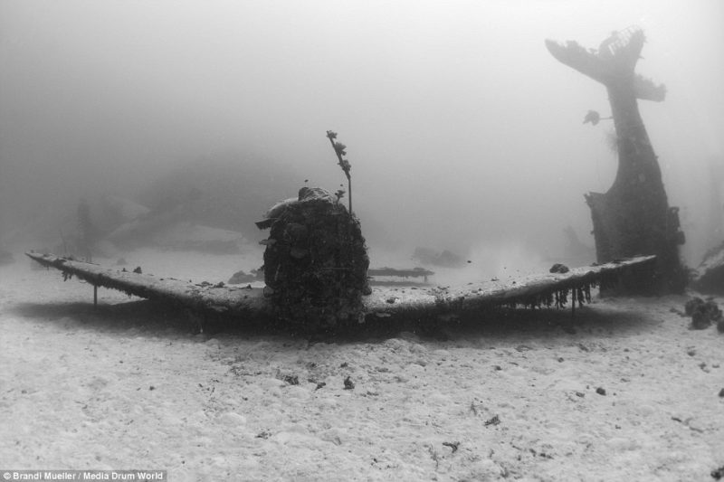underwater-plane-graveyard-World-War-Two-fighters-photography (18)