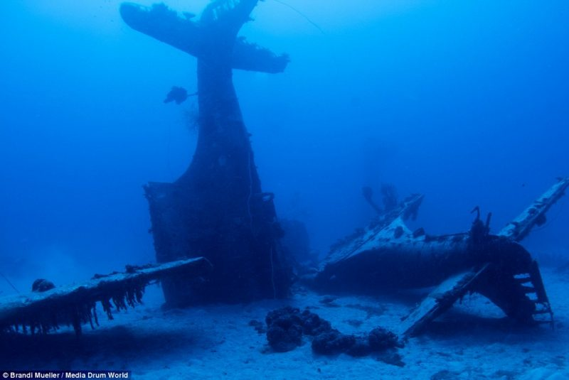 underwater-plane-graveyard-World-War-Two-fighters-photography (19)