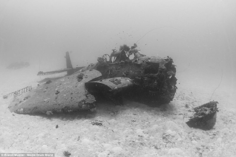 underwater-plane-graveyard-World-War-Two-fighters-photography (20)