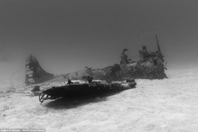 underwater-plane-graveyard-World-War-Two-fighters-photography (4)