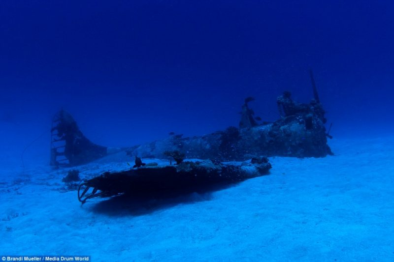 underwater-plane-graveyard-World-War-Two-fighters-photography (5)