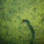 Aerial photo shots of Bangladesh taken by Bangladeshi pilot