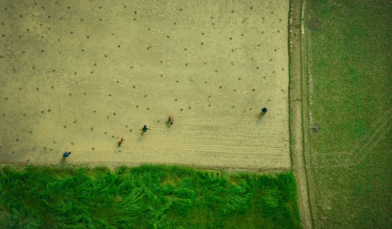 beautiful-aerial-photos-ai-photography-bangladesh-aviator-pilot (7)