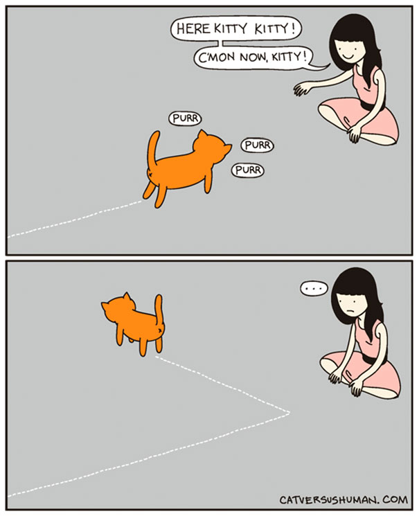 funny-comics-cat-vs-human-illustrations (1)