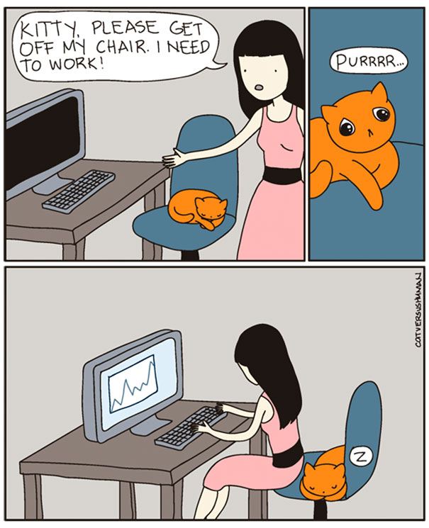 funny-comics-cat-vs-human-illustrations (10)