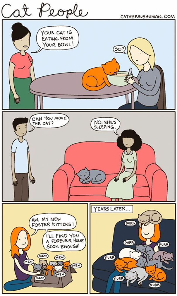 funny-comics-cat-vs-human-illustrations (15)