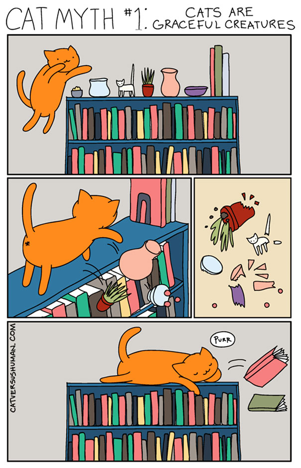 funny-comics-cat-vs-human-illustrations (3)