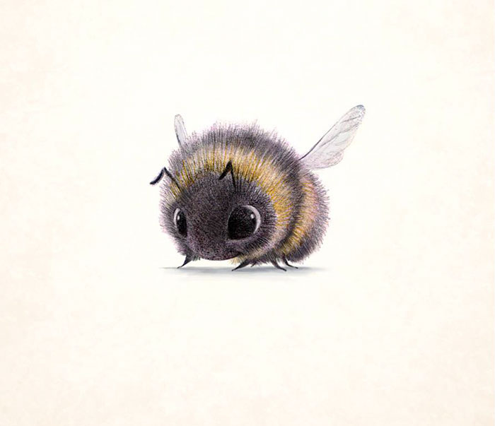 adorable-cute-animal-illustrations-11
