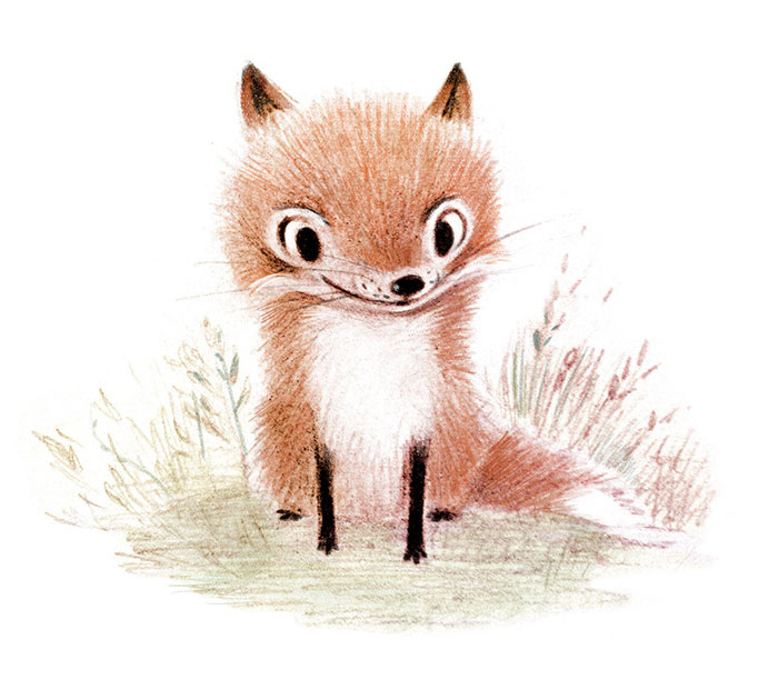 adorable-cute-animal-illustrations-3