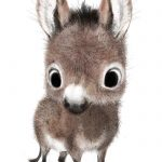 Adorable animal Illustrations