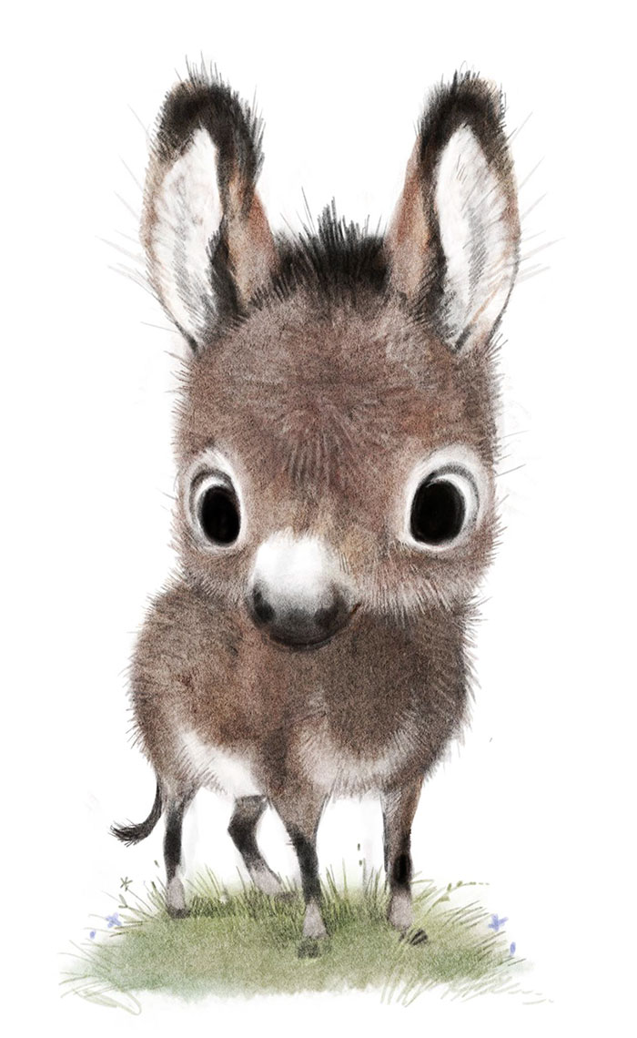 adorable-cute-animal-illustrations-6