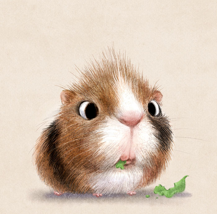 adorable-cute-animal-illustrations-7