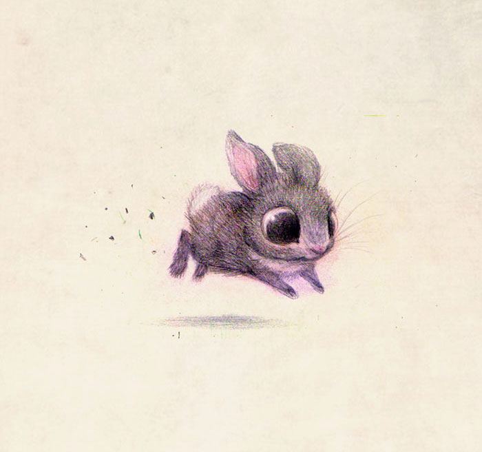 adorable-cute-animal-illustrations-9
