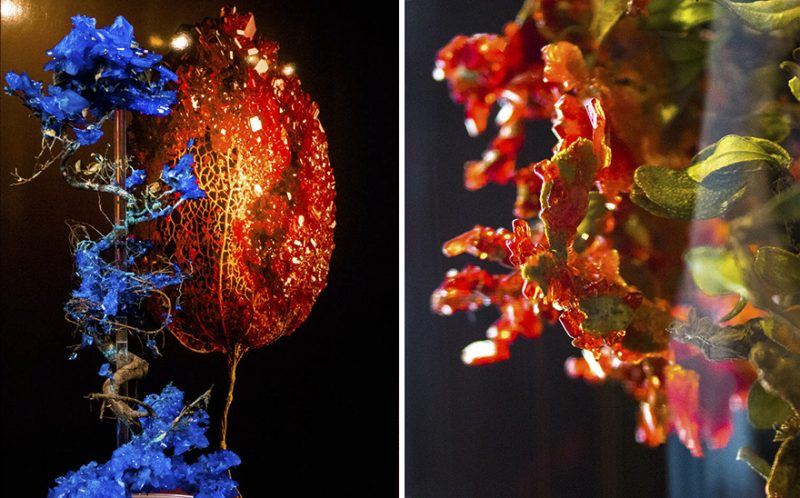 artwork-Encrusting-flowers-with-stabilised-crystals-photo-shoot (1)